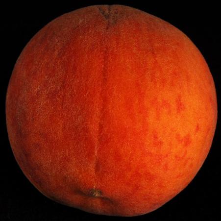 a-peach.jpg