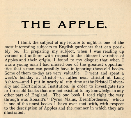 apple-opening.jpg