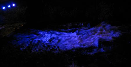 disco-river-56.jpg