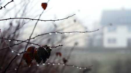 mist-43.jpg