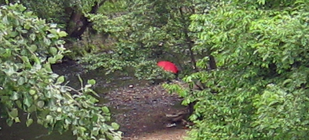 red-brolly-3.jpg