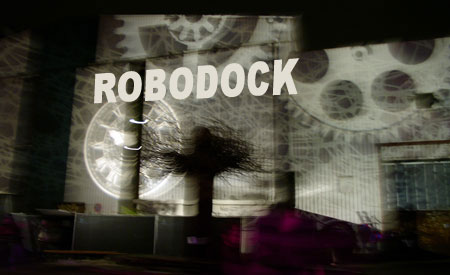 robo769b.jpg