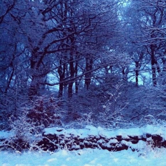 snow-15-dec-11.jpg