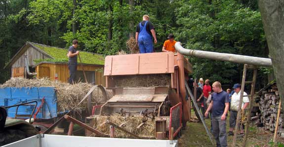 threshing-17.jpg