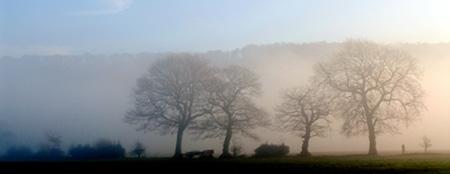 waggon mist.jpg