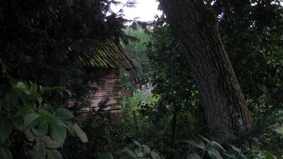 wood-shed-50.jpg